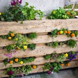 Fai da te e Giardinaggio